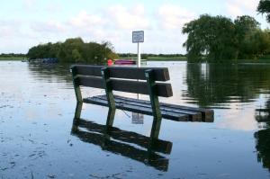 FloodedBench